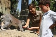 Backstage at the Lisbon zoo is an exhilarating access-all-areas experience